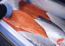 بازار ماهی سالمون