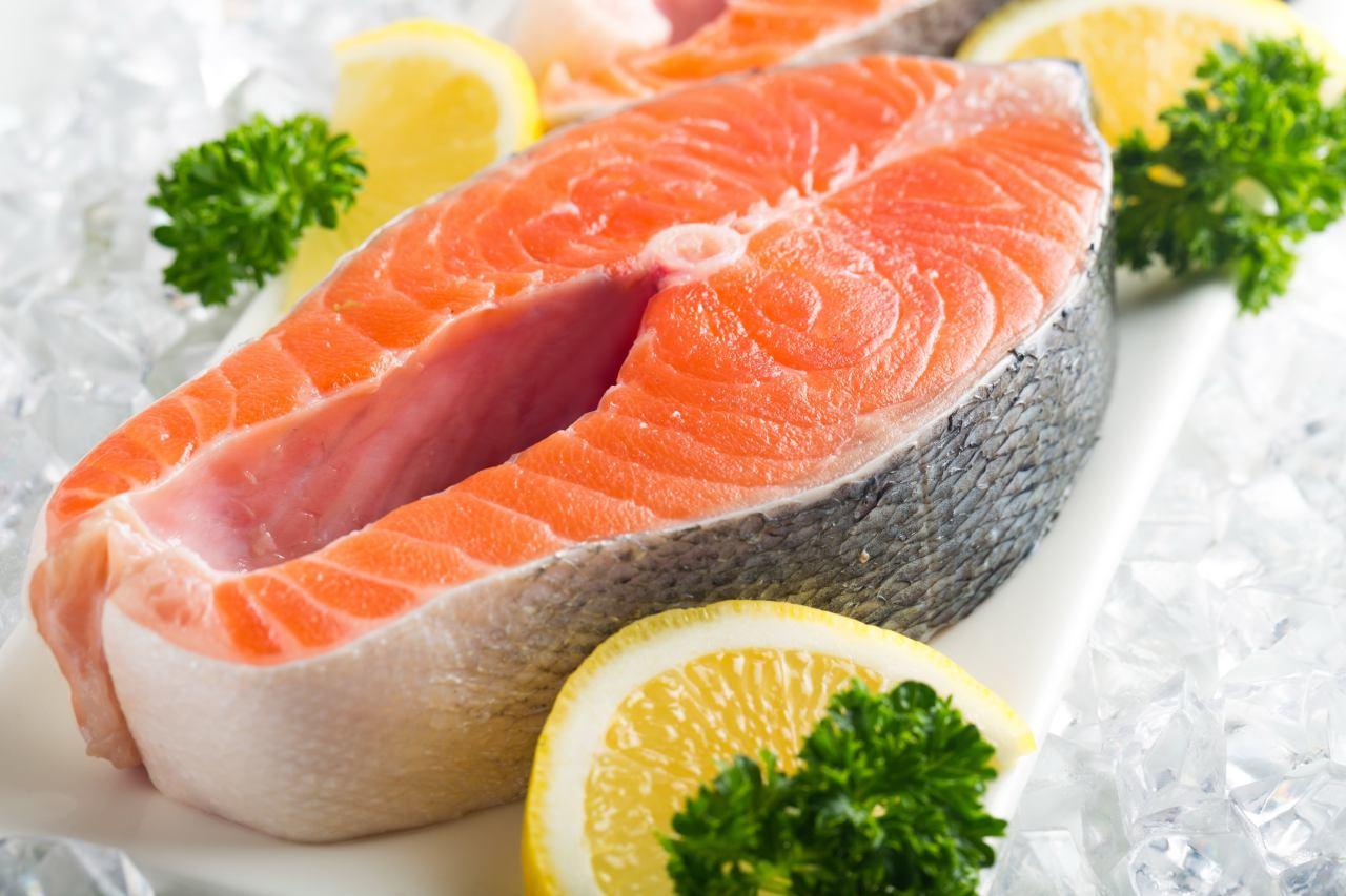 فروش ماهی سالمون زنده